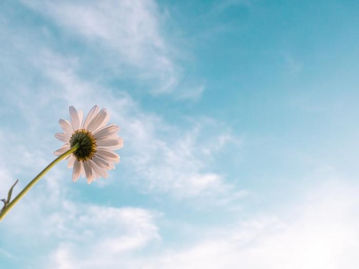Sviatočné zamyslenie: Boh aj nás môže posvätiť