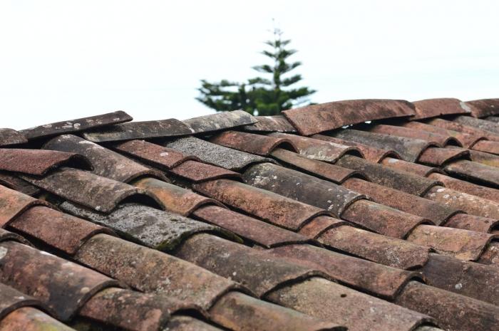 Nedeľné zamyslenie arcibiskupa Cyrila Vasiľa: Rozobratá strecha