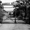 Svetlo nádeje: Ostnaté spomienky z koncentračných táborov