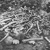 Ranná téma: 100. výročie genocídy spáchanej na Arménoch v Osmanskej ríši