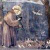 Miroslav Saniga pozýva do pustovne sv. Františka