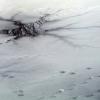 Spoločenský komentár: Tenký ľad